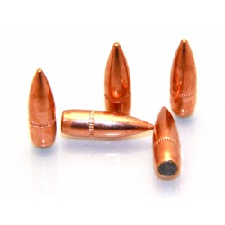Ogives Armscor Calibre.223 62Gr